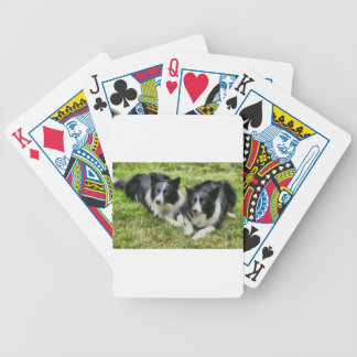 borderCollieDuoFull.jpg Bicycle Playing Cards