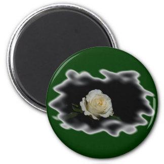 Bordes quemados del rosa blanco imán de frigorifico