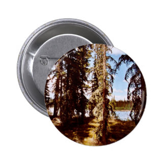 Boreal forest at Scoter Lake Buttons