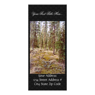 Boreal Forest floor Personalized Rack Card