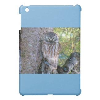 Boreal Owl Closeup Photo Cover For The iPad Mini