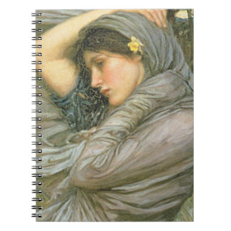 BoREAs, by John William Waterhouse, 1903 Spiral Notebook