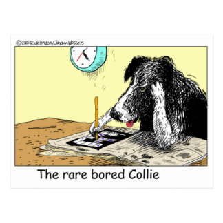 Bored Border Collie Funny Gifts Tees Collectibles Postcard