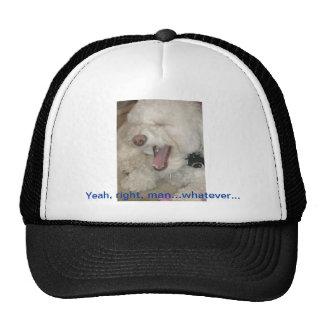 Bored Dog Hat