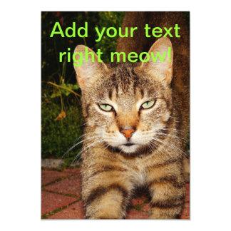 Bored Kitty Cat Card