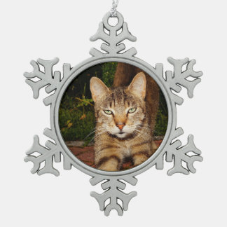 Bored Kitty Cat Snowflake Pewter Christmas Ornament