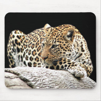 Bored leopard mousepad