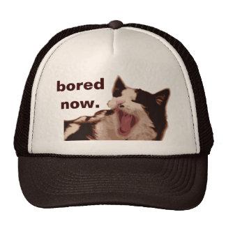 """Bored Now"" Yawning Black & White Cat Trucker Hat"