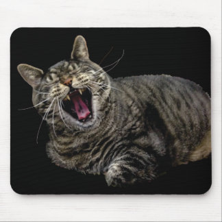 Bored Pepe the cat mouse pad