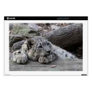 Bored Snow Leopard Cub Laptop Skin