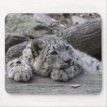 Bored Snow Leopard Cub Mouse Pad