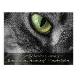 Boredom - Curiosity, Dorothy Parker quote poster