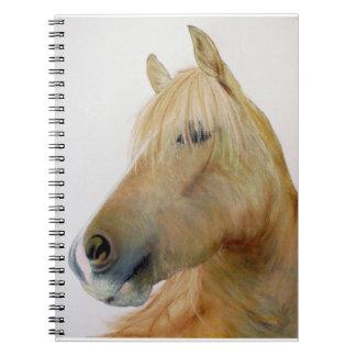 Boris Horse' Notebook