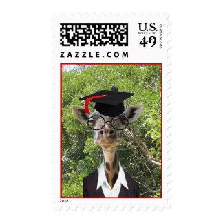 Borla graduada del rojo de la jirafa sello