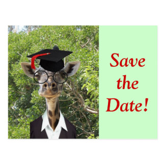 Borla graduada del rojo de la jirafa tarjetas postales