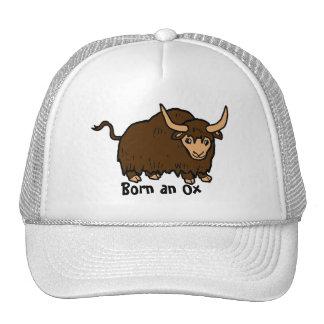 Born an Ox Hat