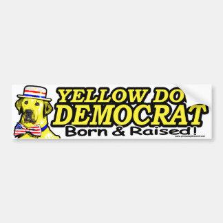 Born And Raised Bumper Sticker