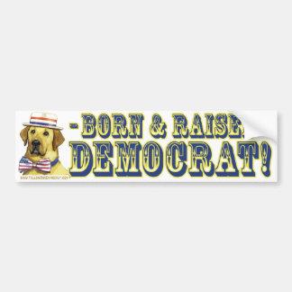Born And Raised Democrat  Bumper Sticker