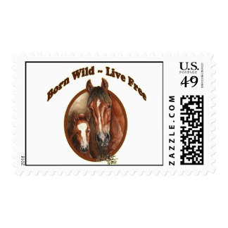 Born Free-Live Wild Mustang Postage Stamp llmartin