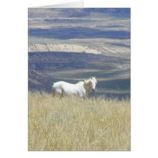 Born Free Wild Mustang Horse Card