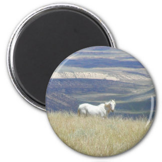 Born Free Wild Mustang Horse Magnet
