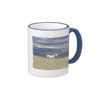 Born Free Wild Mustang Horse Mugs