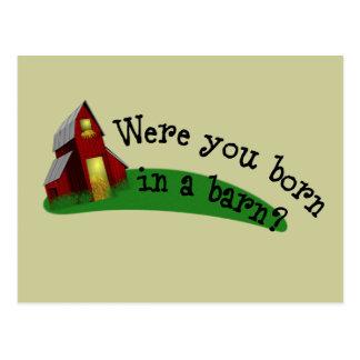 Born in a Barn Quote Postcard
