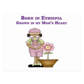 Born in Ethiopia Grown in my Mom's Heart Postcard