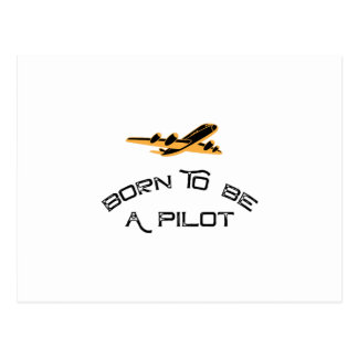 Born To Be A Pilot Airplanes Gift Men Women Postcard