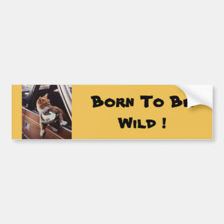 Born To be Wild ! Bumper Sticker. Bumper Sticker