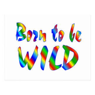 Born to be WILD Postcard