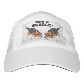 Born To Beagle Hat