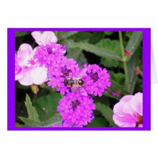 Born to bee wild.... card