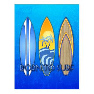 Born To Surf Postcard