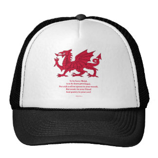 Born Welsh Poem with Dragon Hat