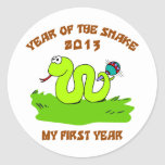 Born Year of The Snake 2013 Classic Round Sticker