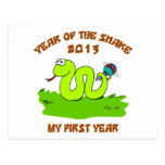 Born Year of The Snake 2013 Postcard