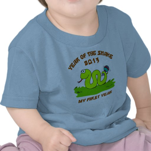 Born Year of The Snake 2013 T Shirts