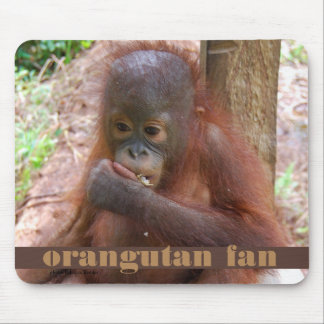 Borneo Orangutan Baby Illegal Pet Trade Mouse Pad
