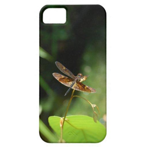 Borneo Rainforest Dragonfly iPhone SE/5/5s Case