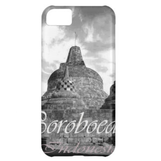 Boroboedoer Tample series of Cover For iPhone 5C