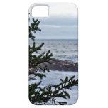 Borrachín marítimo iPhone 5 Case-Mate protectores