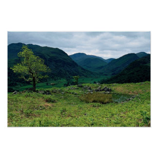 Borrowdale from High Doat, Cumbria at the Cornish Poster