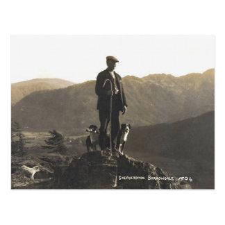 Borrowdale Shepherding 1904 Tarjeta Postal
