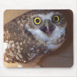 borrowing-owl-2 mouse pad