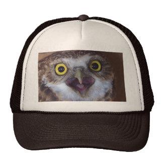 borrowing-owl-3 trucker hat