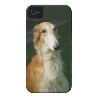 Borzoi dog beautiful photo blackberry bold case