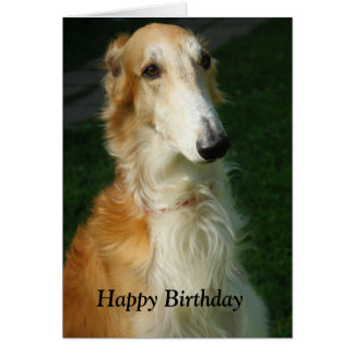 Borzoi dog beautiful photo happy birthday card