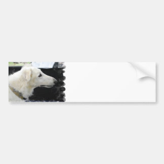 Borzoi Dog Bumper Sticker Car Bumper Sticker