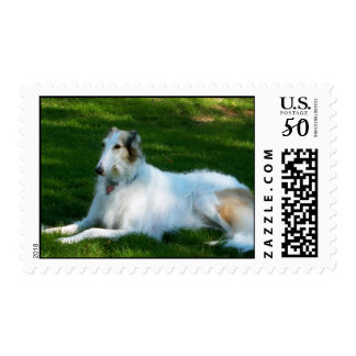 """Borzoi"" Dog Photo Postage Stamp"